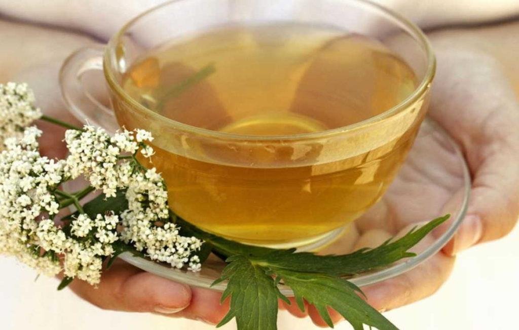 Чай из корня валерианы
