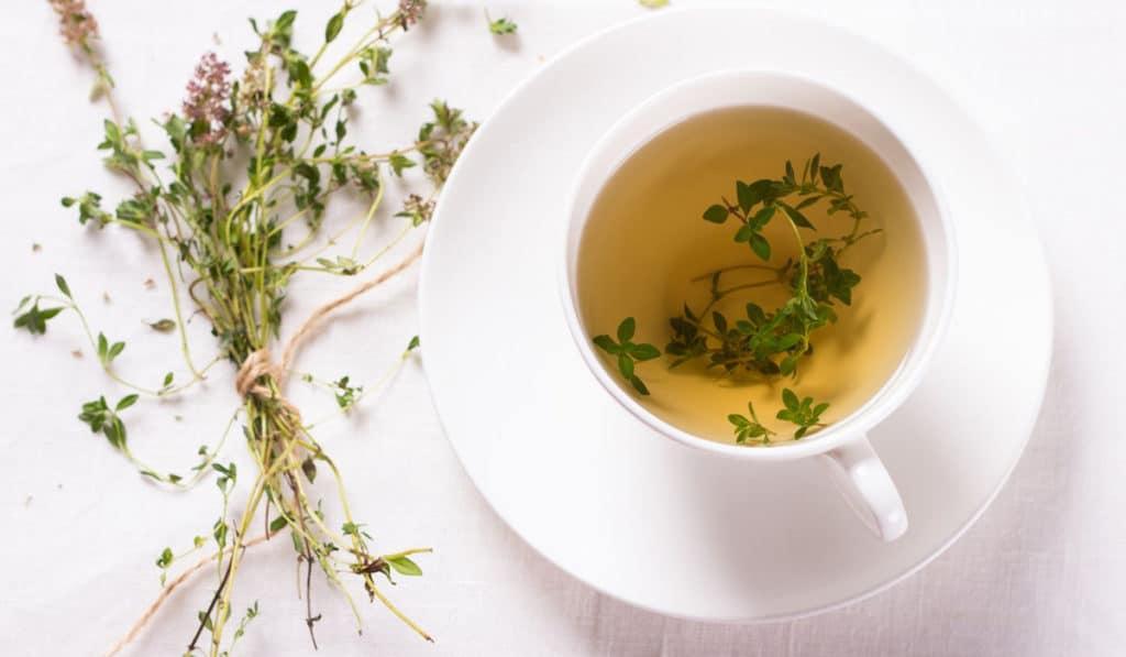 Чай из тимьяна от кашля