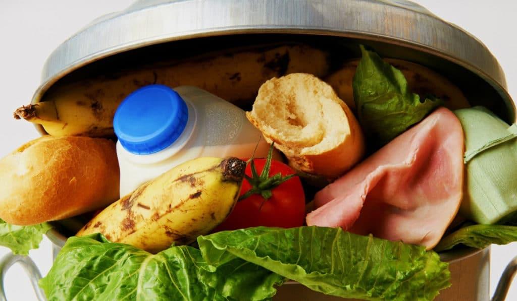 Изготовление компоста в домашних условиях