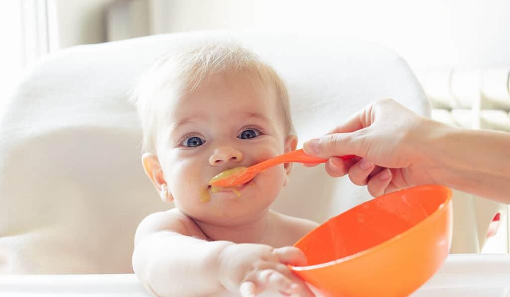 Сколько хранить детскую еду в холодильнике