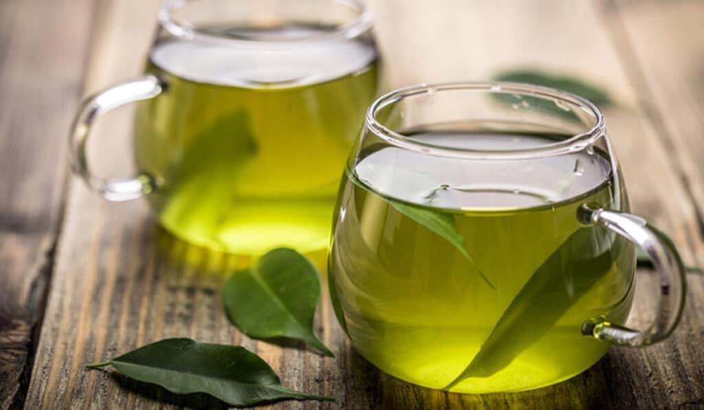 Зеленый чай повышает обмен веществ