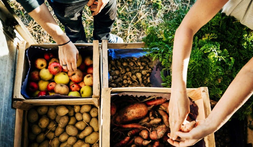 Можно ли заразится коронавирусом касаясь продуктов